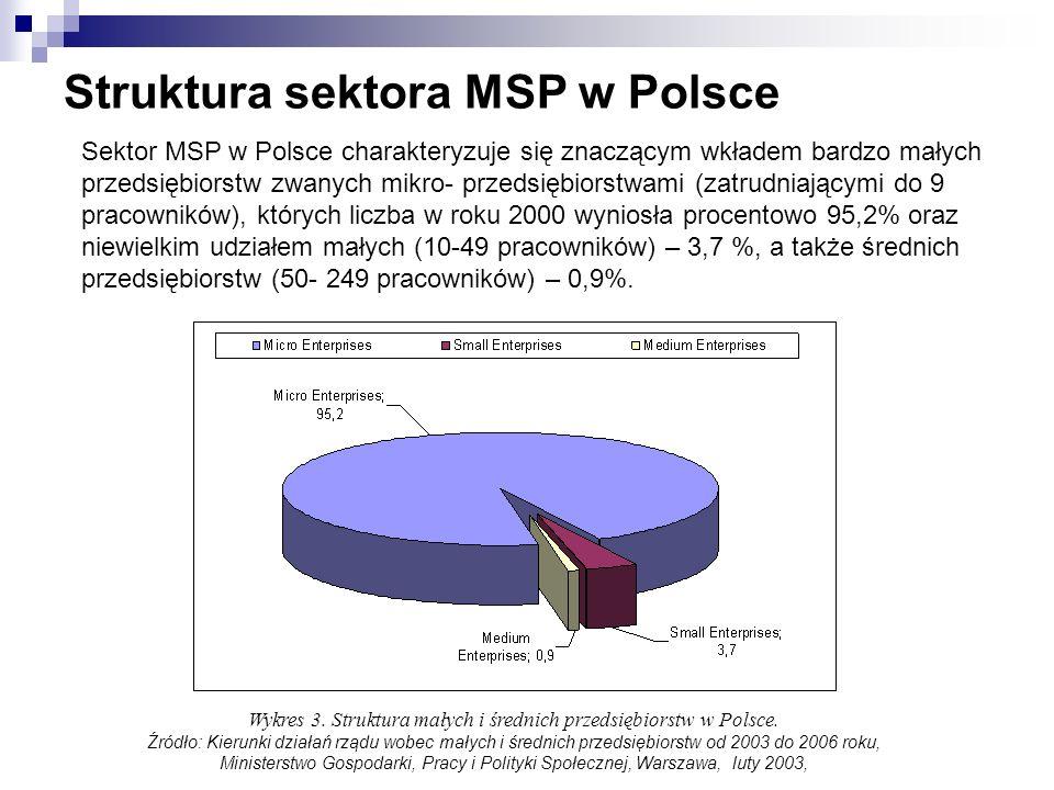 Struktura sektora MSP w Polsce