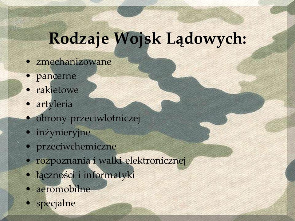 Rodzaje Wojsk Lądowych: