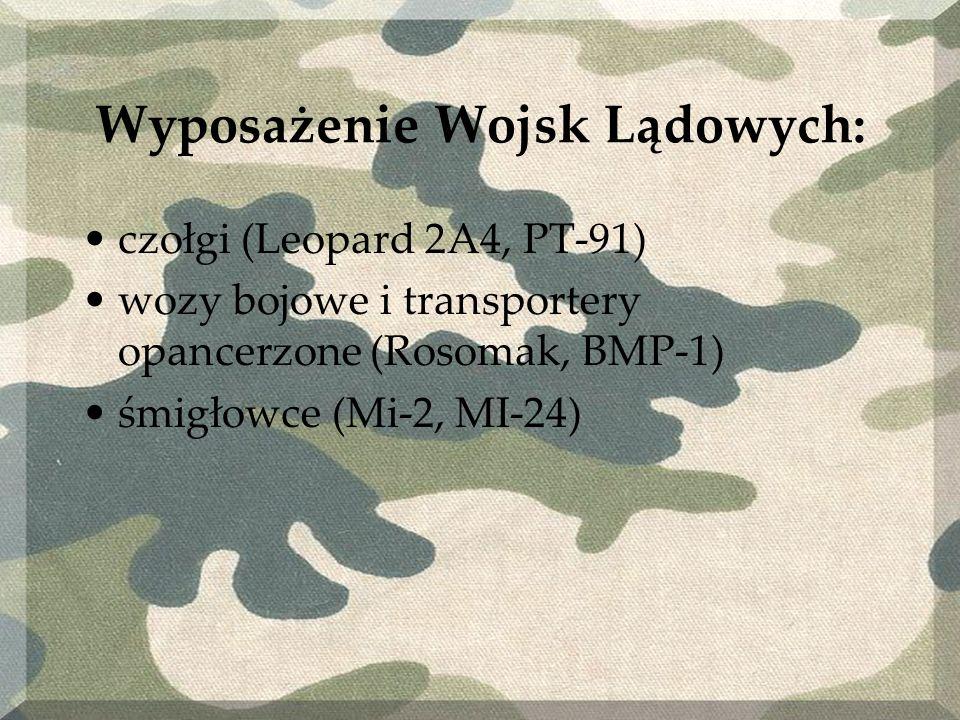 Wyposażenie Wojsk Lądowych: