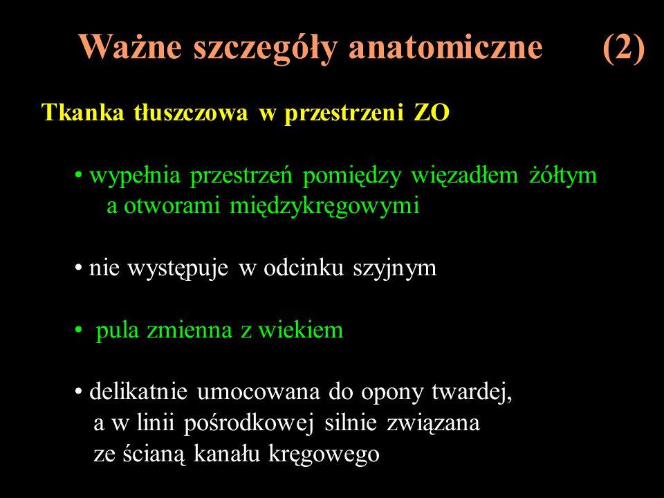 Ważne szczegóły anatomiczne (2)