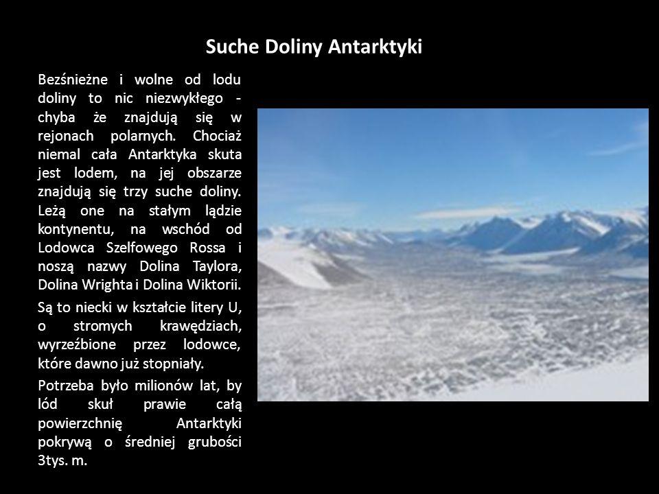 Suche Doliny Antarktyki