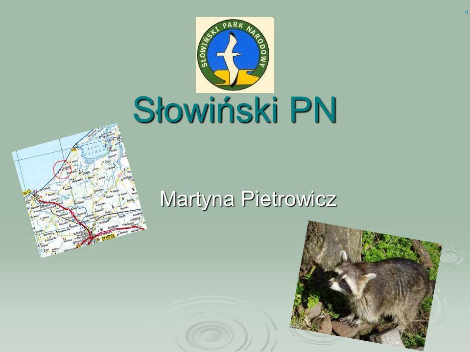 Słowiński PN Martyna Pietrowicz