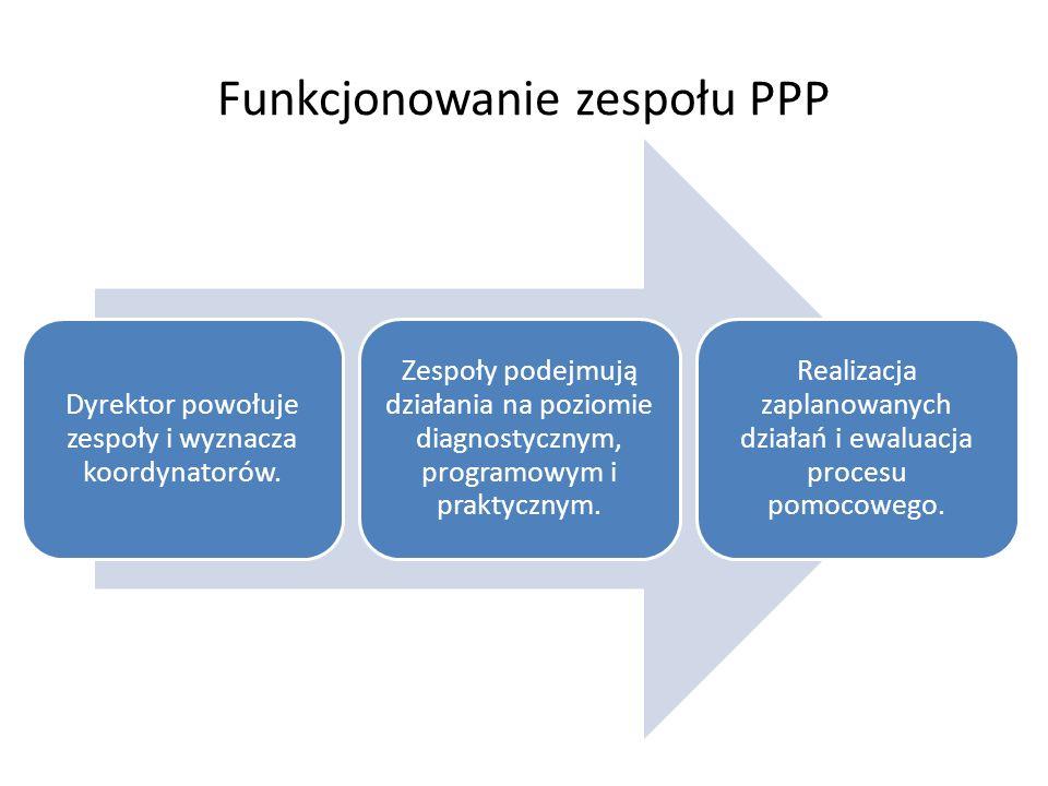Funkcjonowanie zespołu PPP