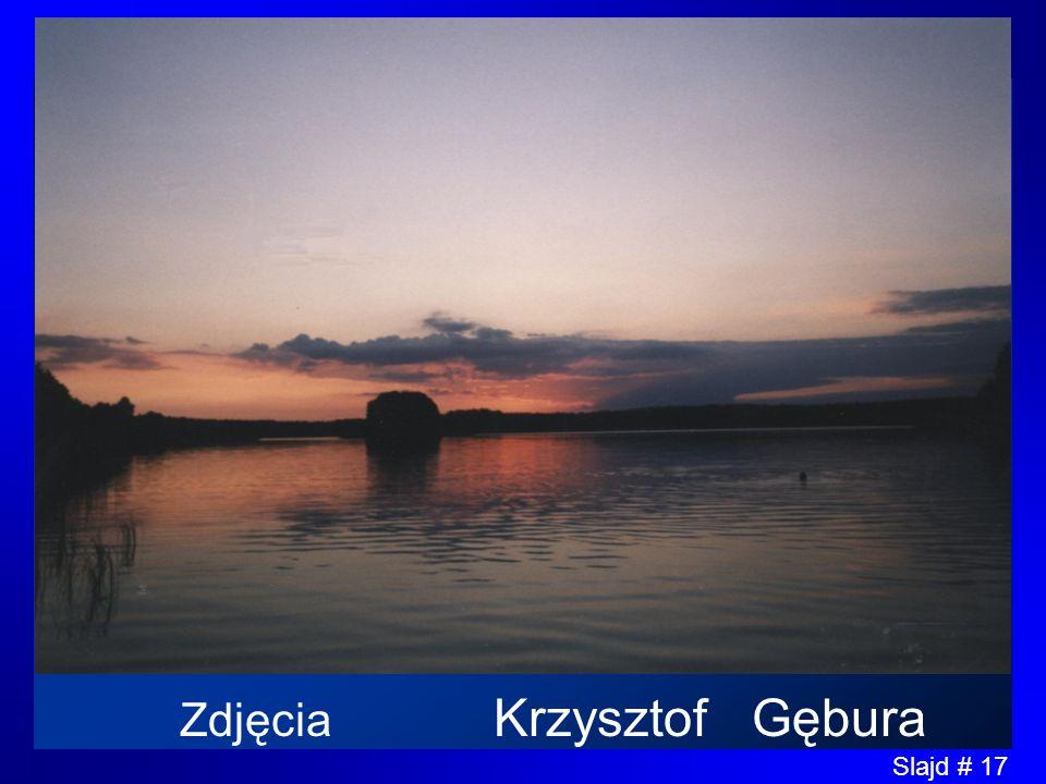 Zdjęcia Krzysztof Gębura
