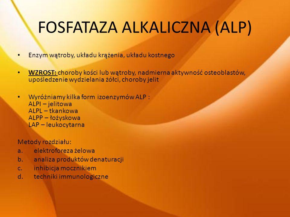 FOSFATAZA ALKALICZNA (ALP)
