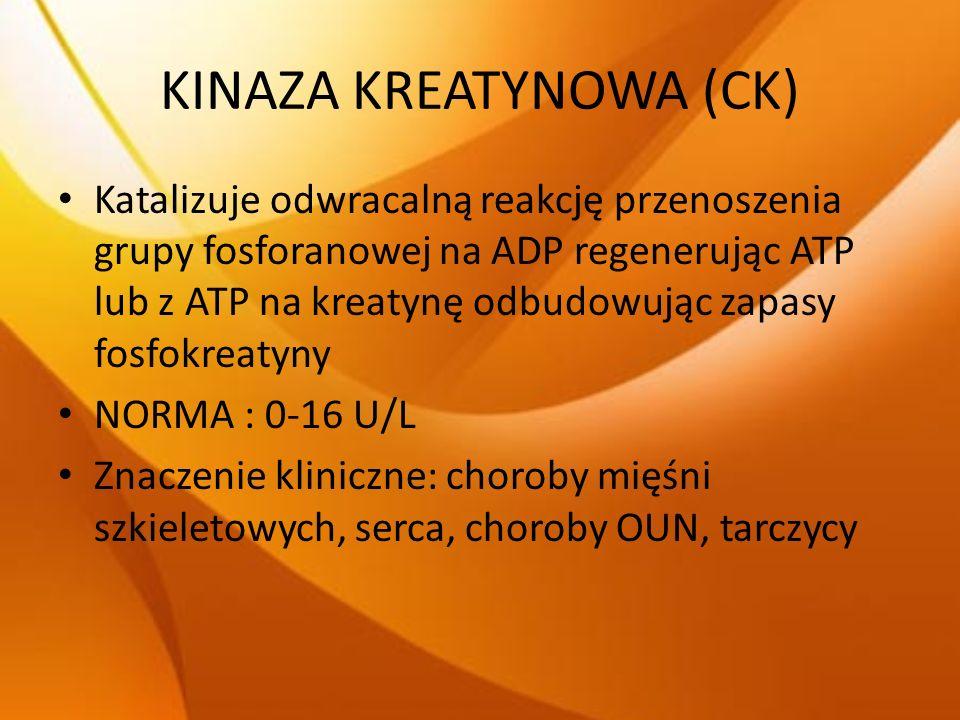 KINAZA KREATYNOWA (CK)