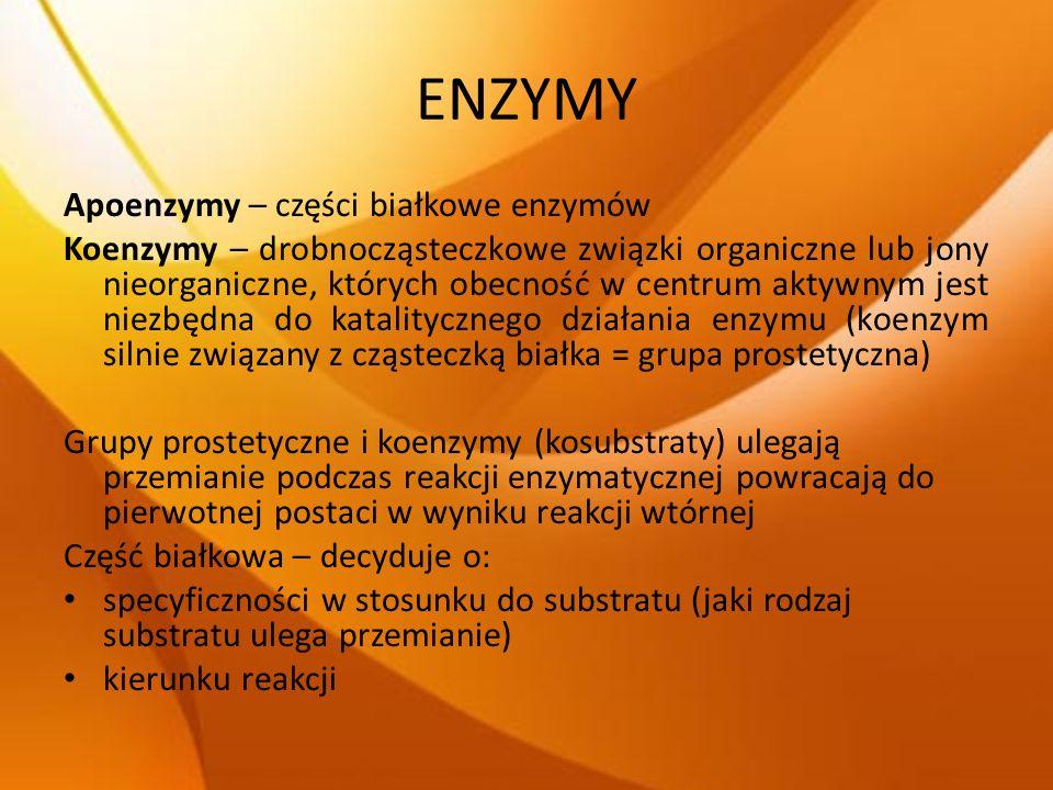 ENZYMY Apoenzymy – części białkowe enzymów