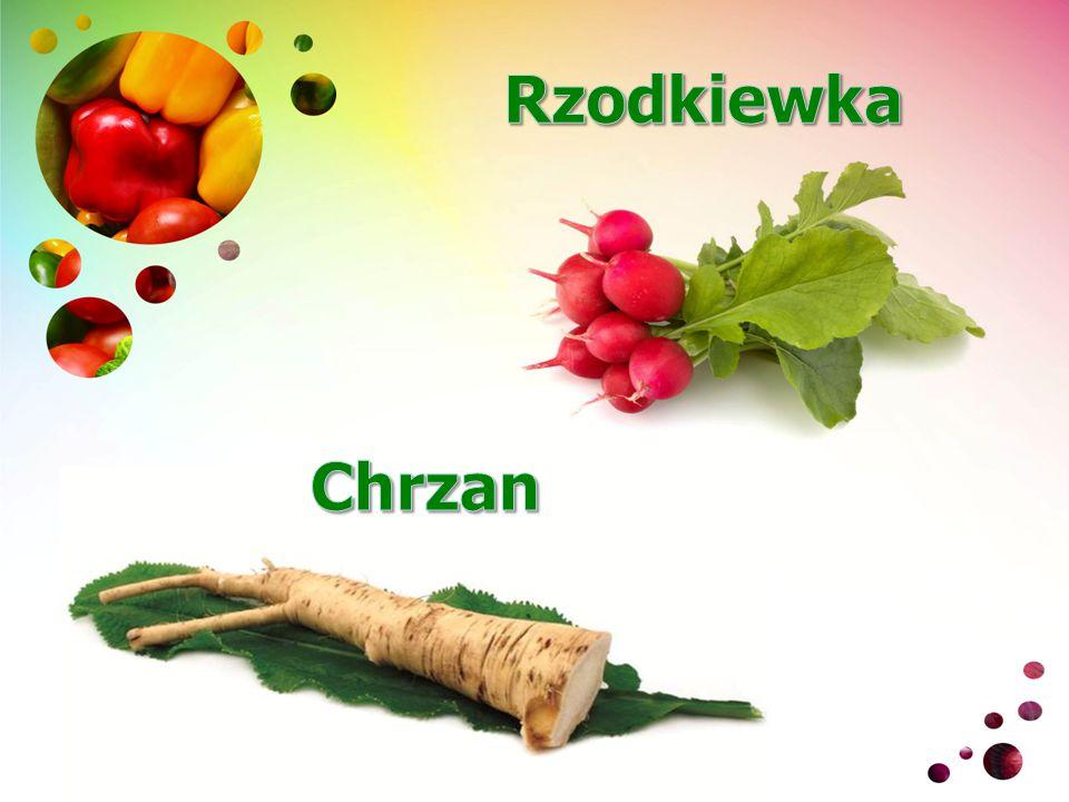Rzodkiewka Chrzan