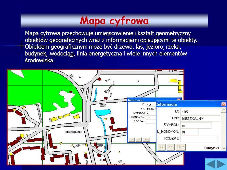 Mapa cyfrowa