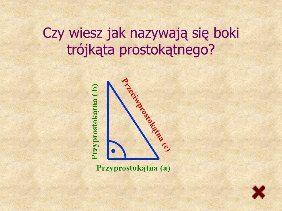 Czy wiesz jak nazywają się boki trójkąta prostokątnego
