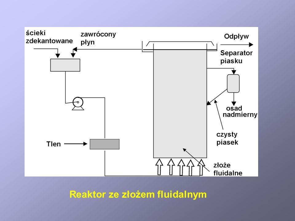 Reaktor ze złożem fluidalnym