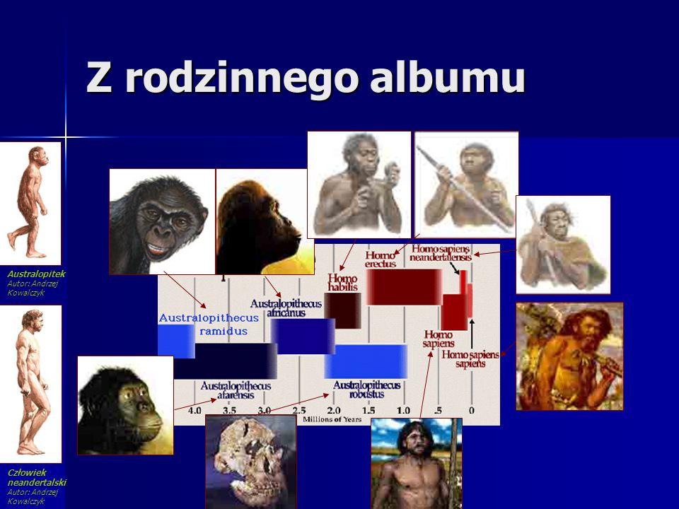 Z rodzinnego albumu Australopitek Autor: Andrzej Kowalczyk