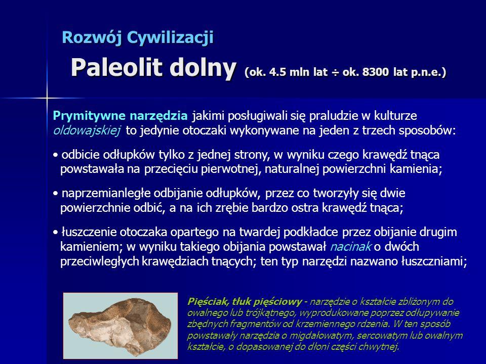 Rozwój Cywilizacji Paleolit dolny (ok. 4.5 mln lat ÷ ok. 8300 lat p.n.e.)