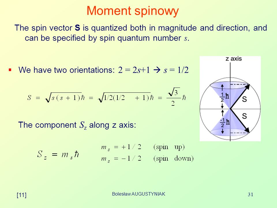 Moment spinowyThe spin vector S is quantized both in magnitude and direction, and can be specified by spin quantum number s.