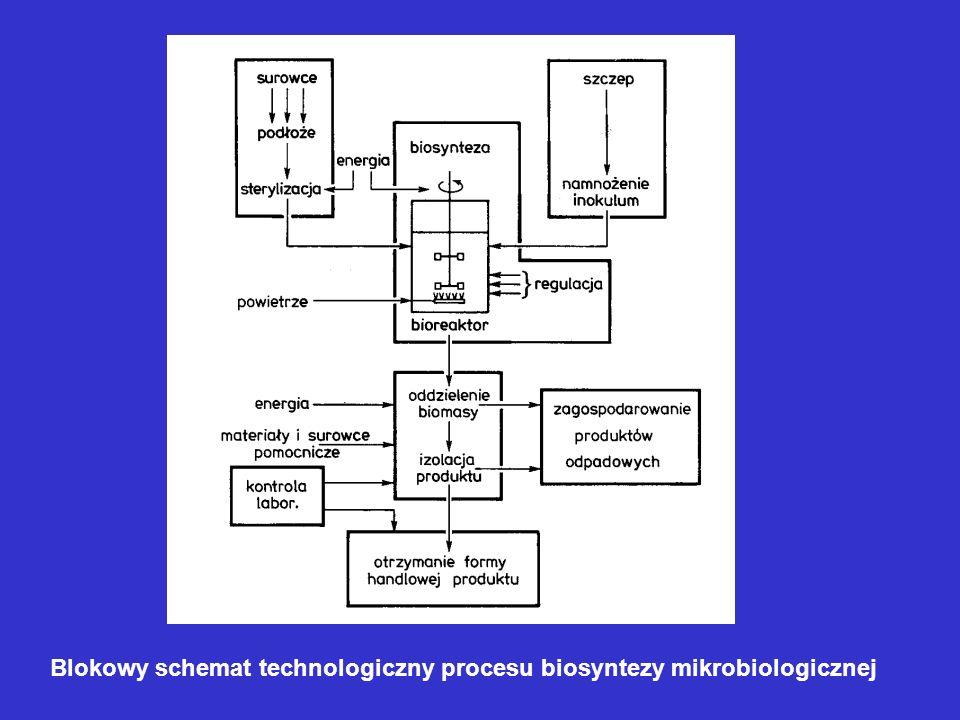 Blokowy schemat technologiczny procesu biosyntezy mikrobiologicznej