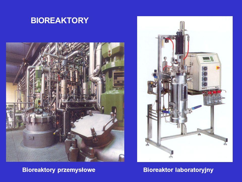 BIOREAKTORY Bioreaktory przemysłowe Bioreaktor laboratoryjny