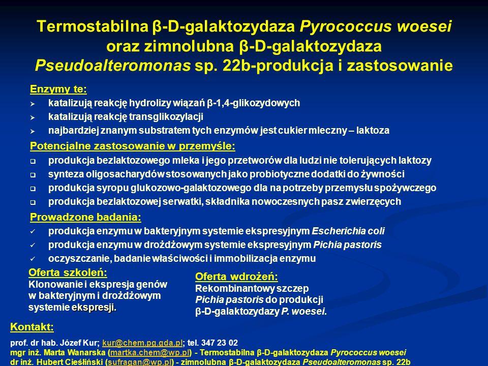 Termostabilna β-D-galaktozydaza Pyrococcus woesei oraz zimnolubna β-D-galaktozydaza Pseudoalteromonas sp. 22b-produkcja i zastosowanie