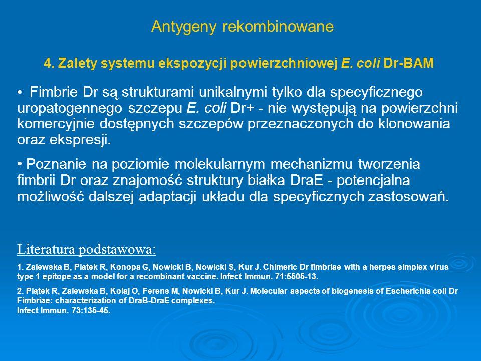 4. Zalety systemu ekspozycji powierzchniowej E. coli Dr-BAM