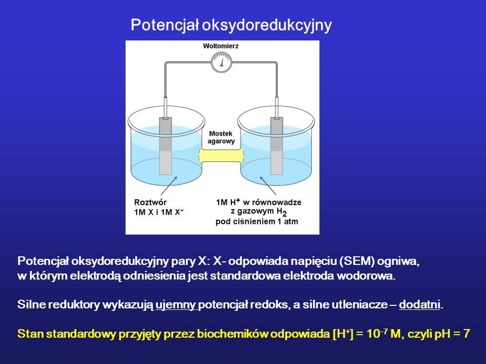 Potencjał oksydoredukcyjny