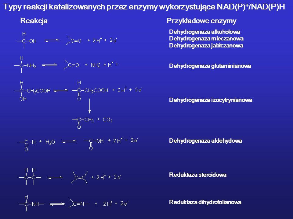 Typy reakcji katalizowanych przez enzymy wykorzystujące NAD(P)+/NAD(P)H