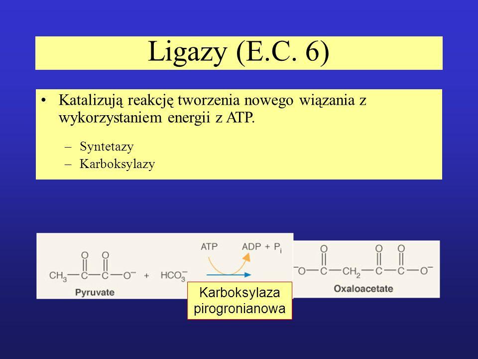Karboksylaza pirogronianowa
