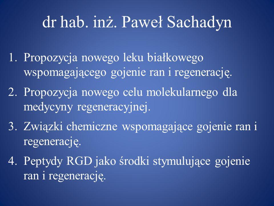 dr hab. inż. Paweł Sachadyn