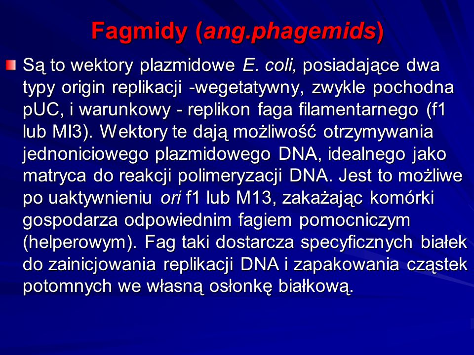 Fagmidy (ang.phagemids)