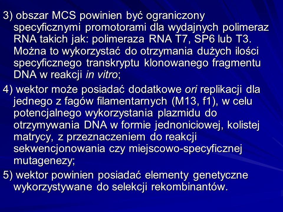 3) obszar MCS powinien być ograniczony specyficznymi promotorami dla wydajnych polimeraz RNA takich jak: polimeraza RNA T7, SP6 lub T3. Można to wykorzystać do otrzymania dużych ilości specyficznego transkryptu klonowanego fragmentu DNA w reakcji in vitro;