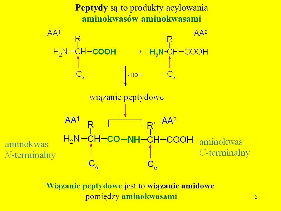 Peptydy są to produkty acylowania aminokwasów aminokwasami