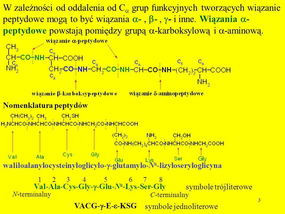 W zależności od oddalenia od Ca grup funkcyjnych tworzących wiązanie peptydowe mogą to być wiązania a- , b- , g- i inne. Wiązania a-peptydowe powstają pomiędzy grupą a-karboksylową i a-aminową.