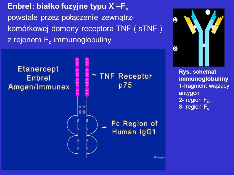 Enbrel: białko fuzyjne typu X –Fc powstałe przez połączenie zewnątrz-