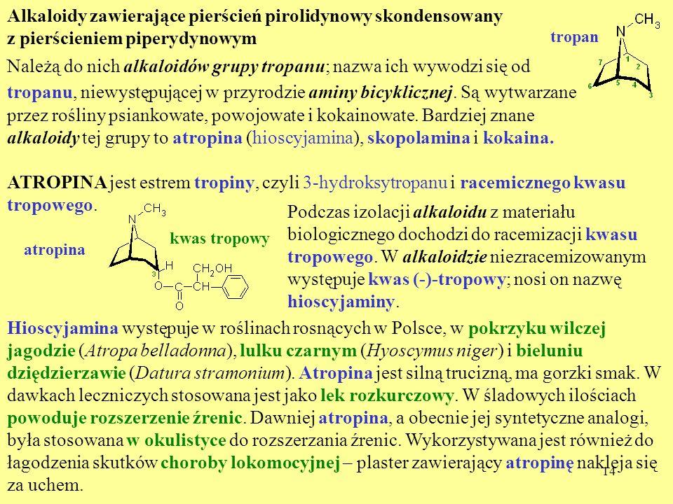Alkaloidy zawierające pierścień pirolidynowy skondensowany z pierścieniem piperydynowym
