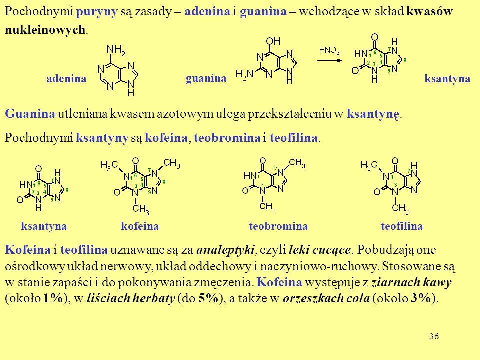 Guanina utleniana kwasem azotowym ulega przekształceniu w ksantynę.