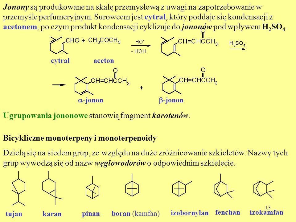 Ugrupowania jononowe stanowią fragment karotenów.