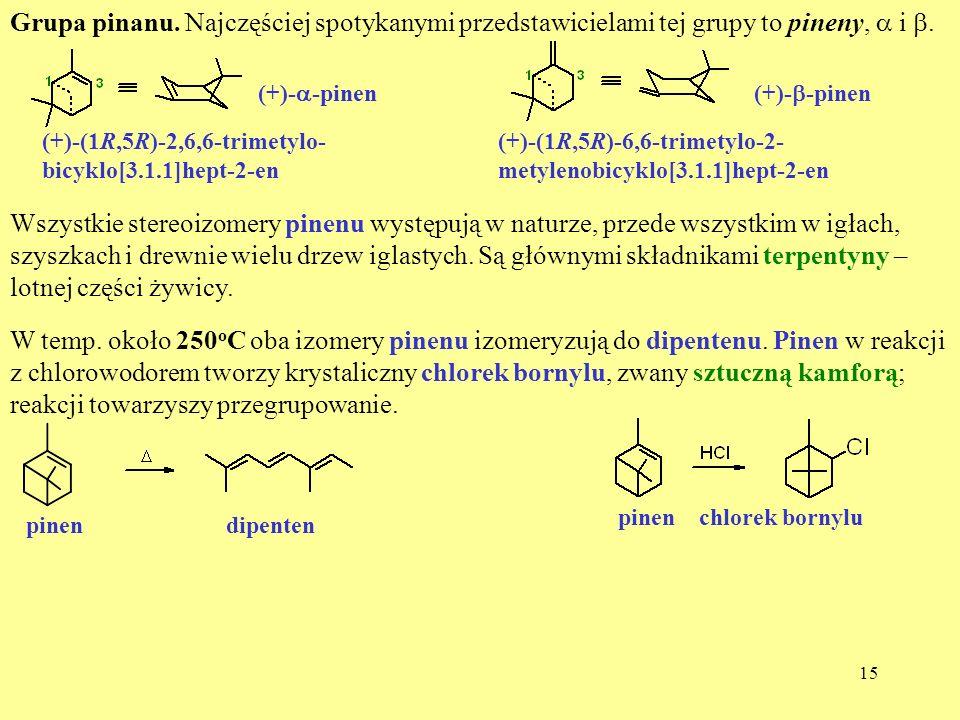 Grupa pinanu. Najczęściej spotykanymi przedstawicielami tej grupy to pineny, a i b.