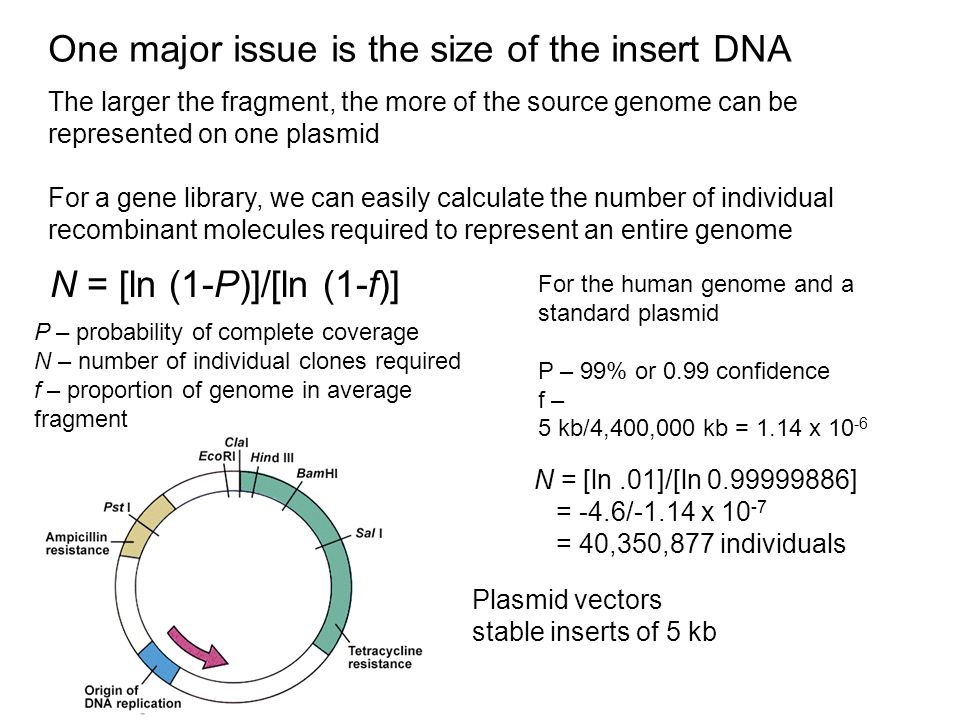 One major issue is the size of the insert DNA