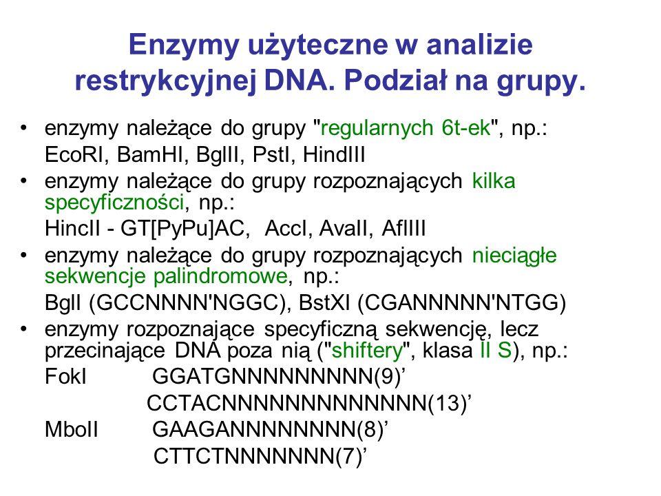 Enzymy użyteczne w analizie restrykcyjnej DNA. Podział na grupy.