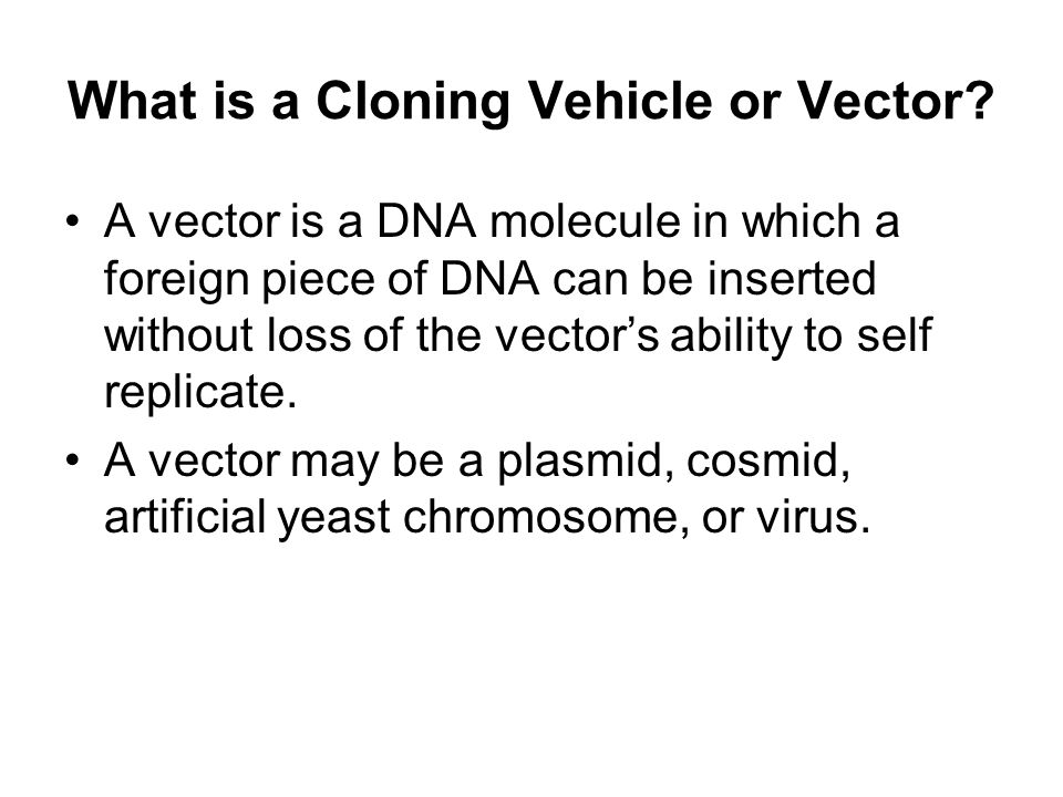 What is a Cloning Vehicle or Vector