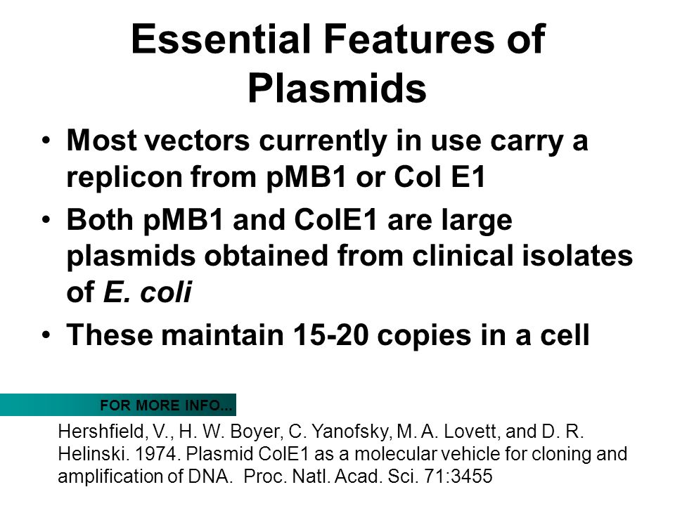 Essential Features of Plasmids