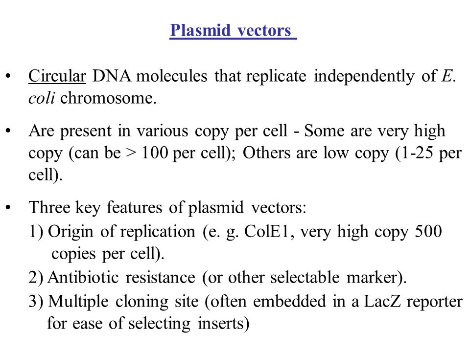 Plasmid vectorsCircular DNA molecules that replicate independently of E. coli chromosome.