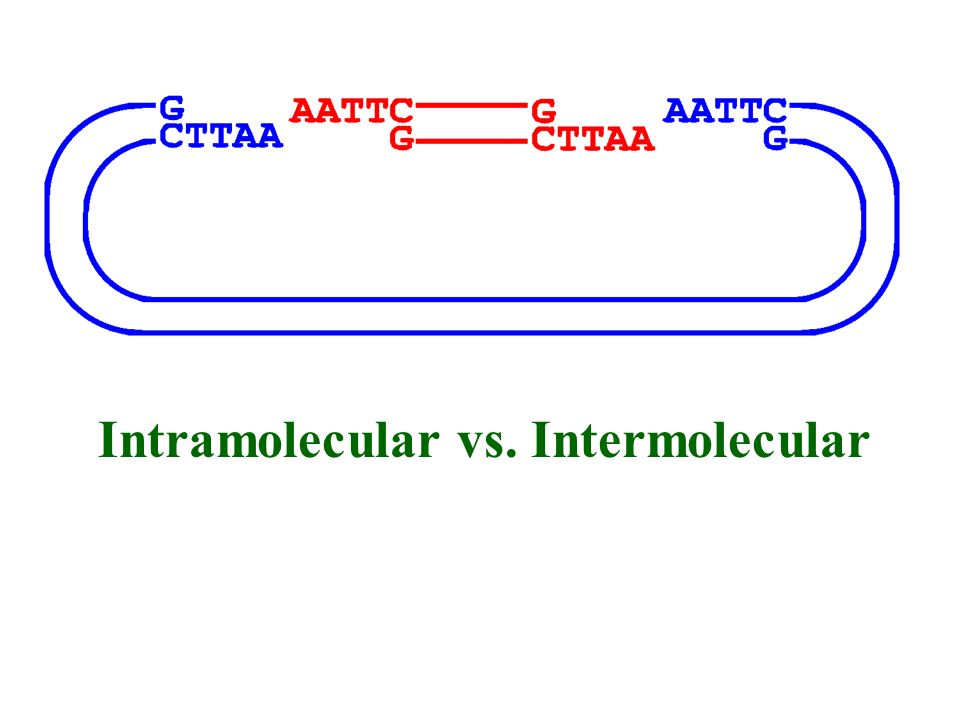 Intramolecular vs. Intermolecular