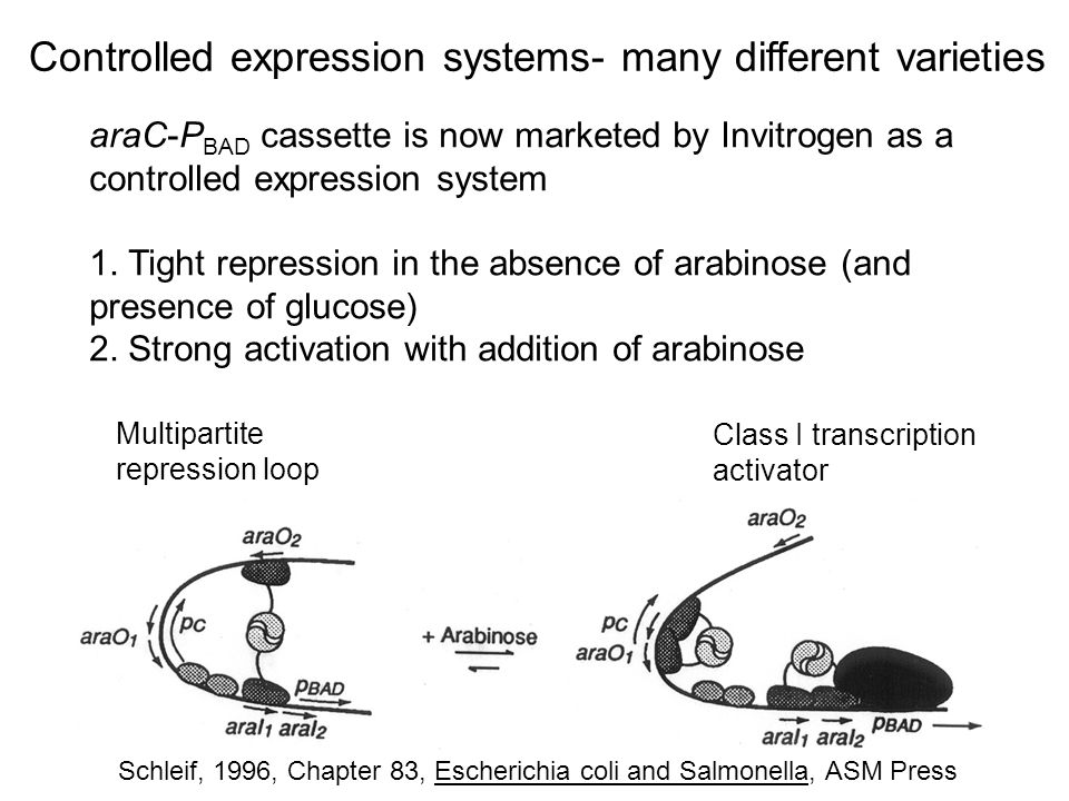 Controlled expression systems- many different varieties
