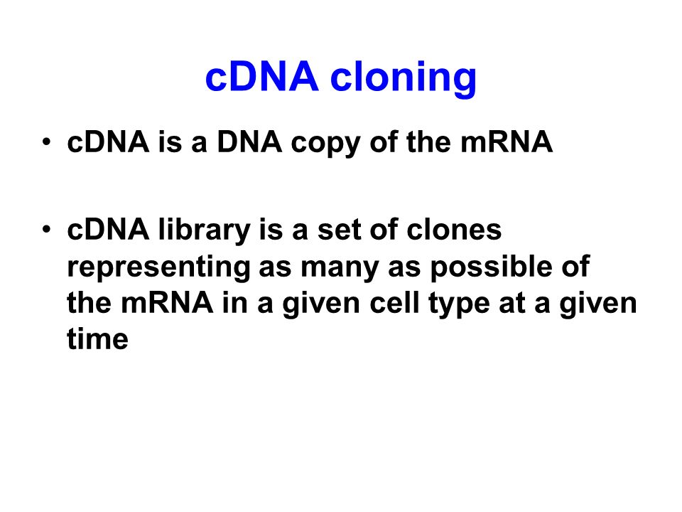 cDNA cloning cDNA is a DNA copy of the mRNA