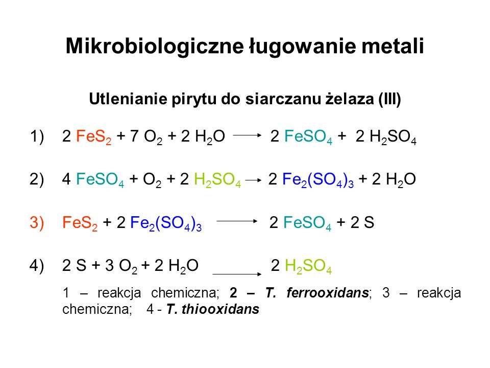 Mikrobiologiczne ługowanie metali