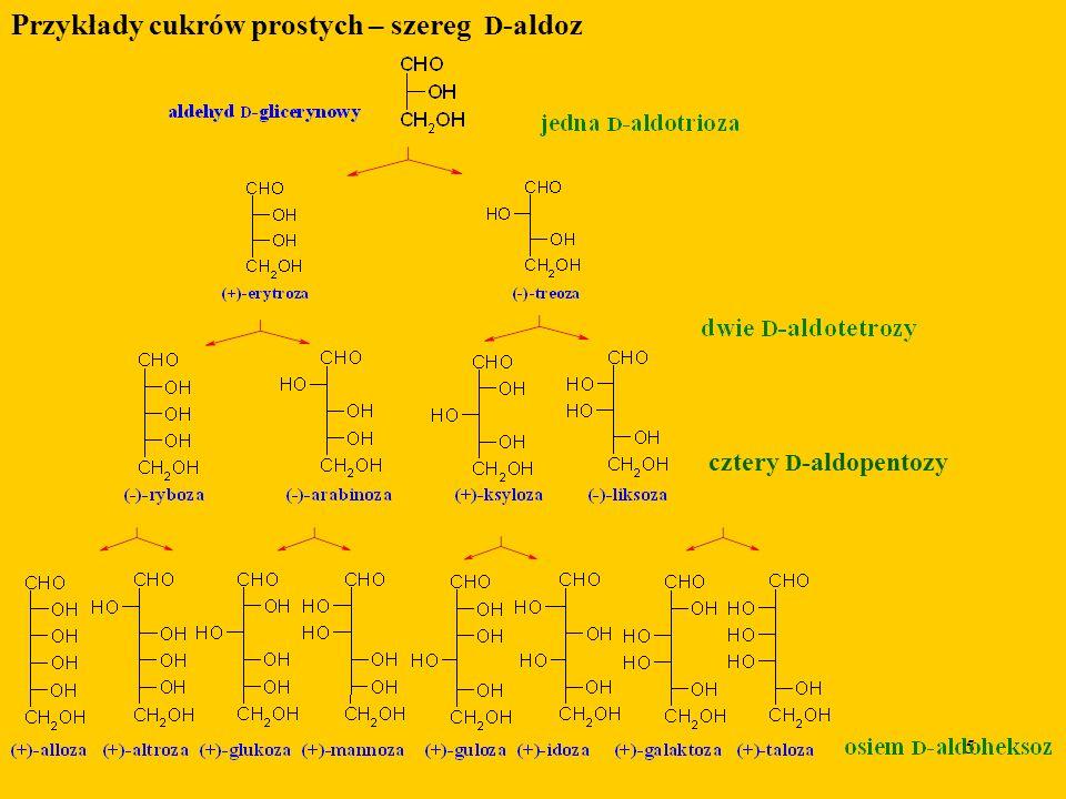 Przykłady cukrów prostych – szereg D-aldoz
