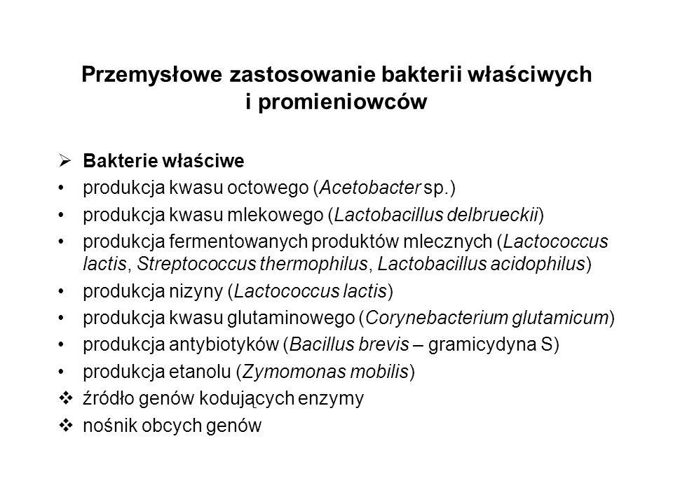 Przemysłowe zastosowanie bakterii właściwych i promieniowców