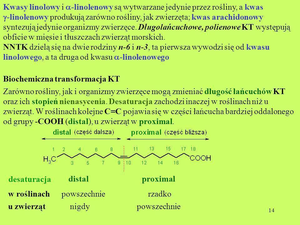 Kwasy linolowy i a-linolenowy są wytwarzane jedynie przez rośliny, a kwas