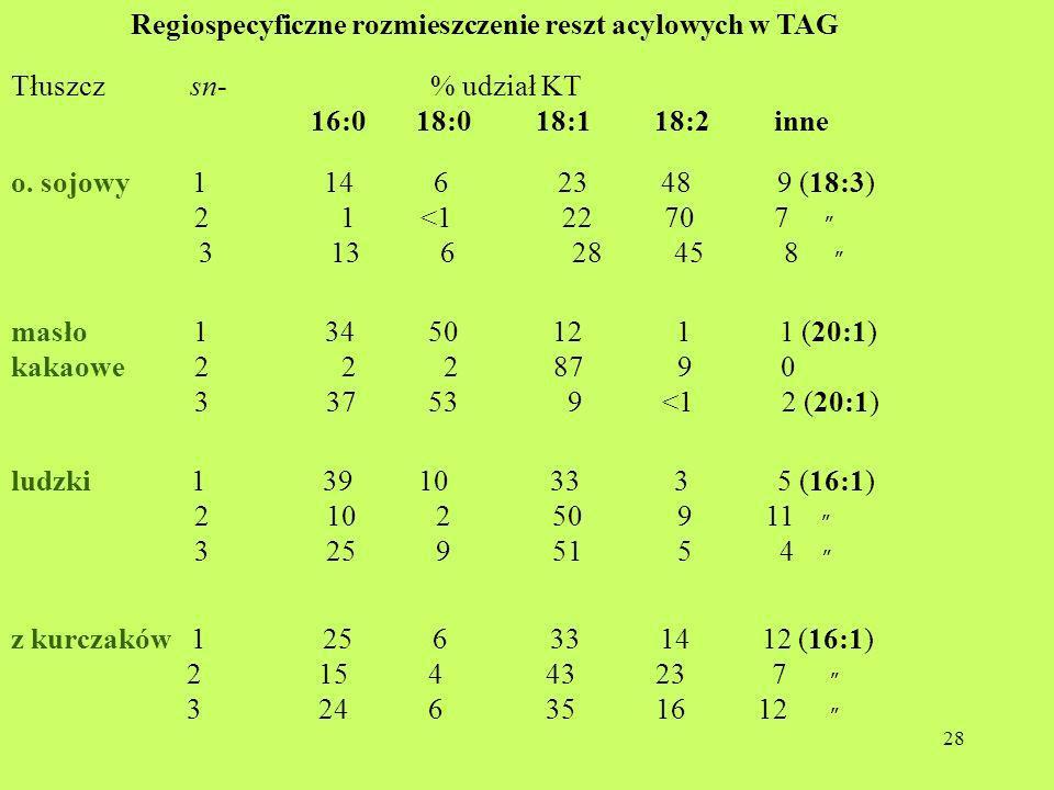Regiospecyficzne rozmieszczenie reszt acylowych w TAG
