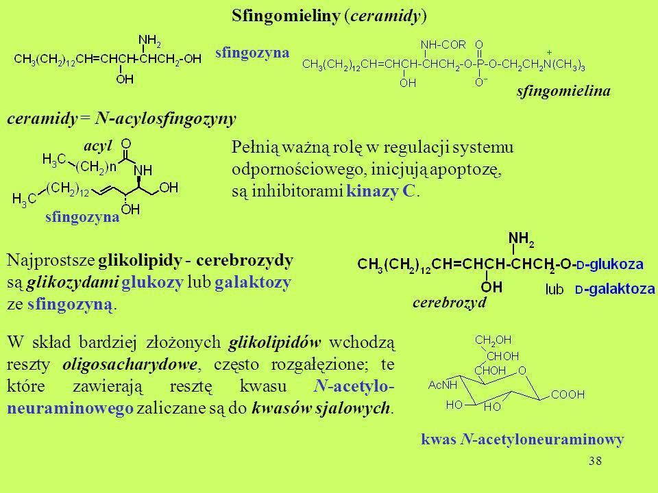Sfingomieliny (ceramidy)