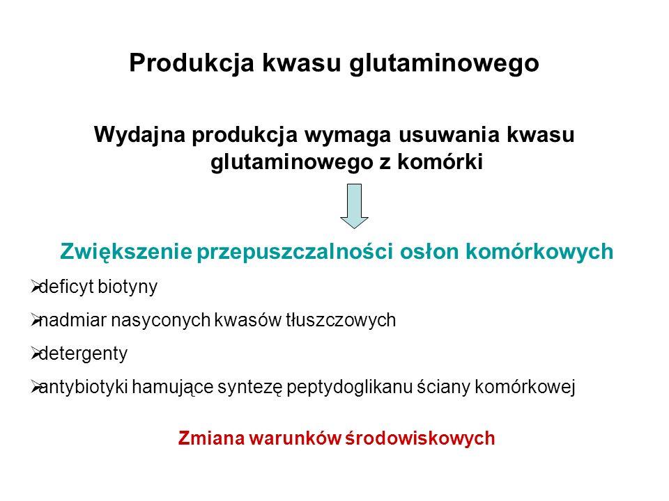 Produkcja kwasu glutaminowego